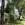 Three Private Romantic Cottages